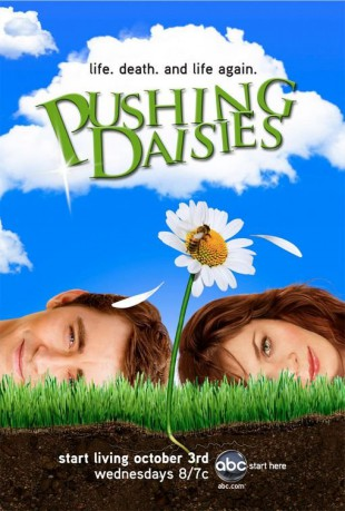cover Pushing Daisies - Staffeln 2